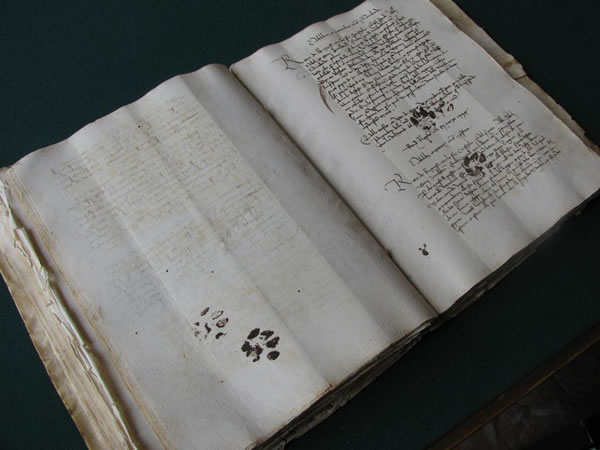 Cat prints, in 15th century ink (Filipovic)
